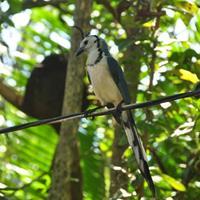 Zdjęcia z podróży po Nikaragua